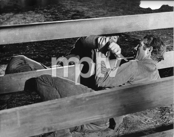 """""""Nevada Smith""""Steve McQueen1966 © 1978 Chester Maydole - Image 0019_1119"""