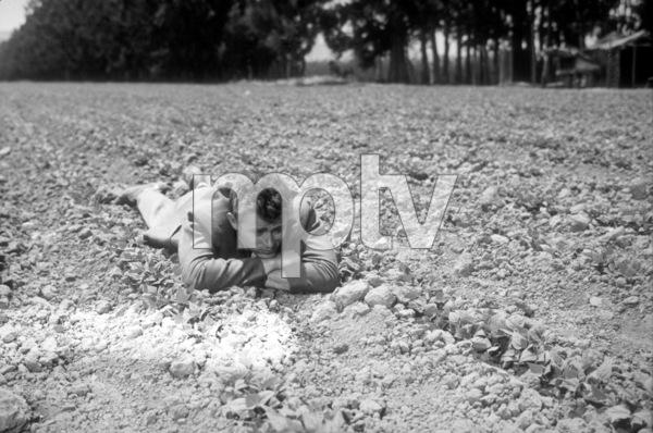 "James Dean watching his crop growin ""East of Eden.""1955 Warner / MPTVPhoto by Floyd McCarty - Image 0024_0258"