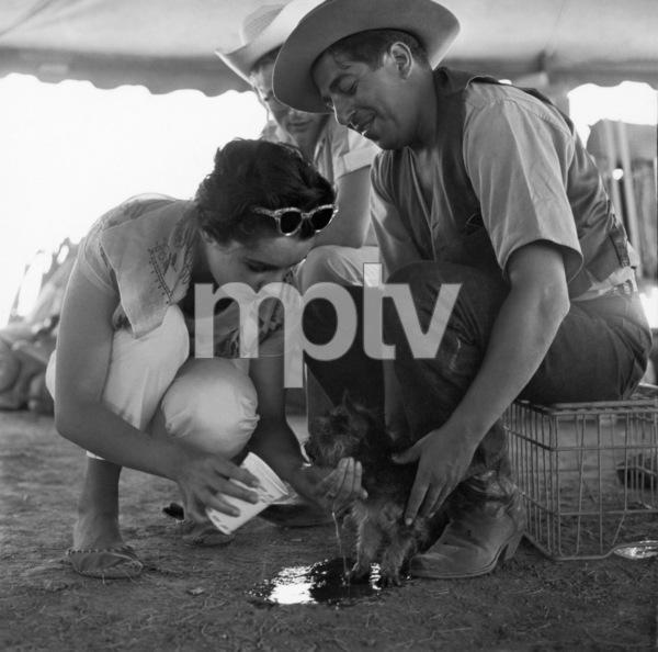 """Giant""Elizabeth Taylor, James Dean1955© 1978 Sid Avery - Image 0024_2435"