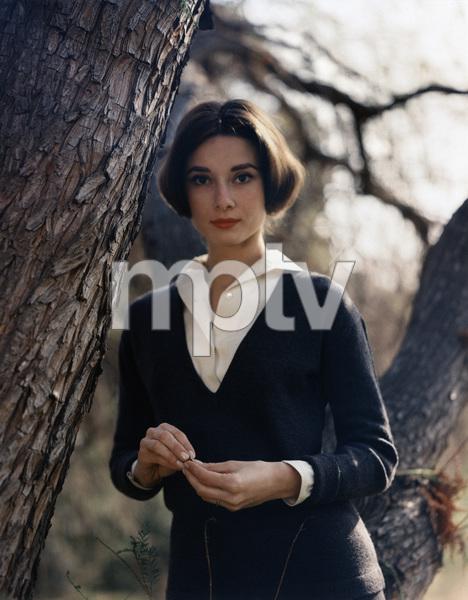 Audrey Hepburn1957© 1978 Sid Avery - Image 0033_1062