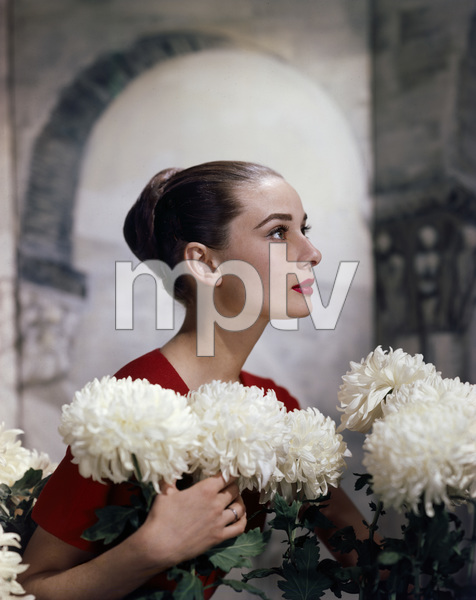 Audrey Hepburn1959© 1978 Wallace Seawell - Image 0033_2298