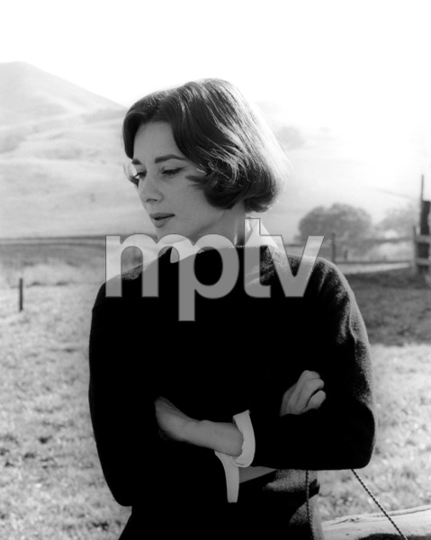Audrey Hepburn1957Copyright John Swope Trust / MPTV - Image 0033_2373