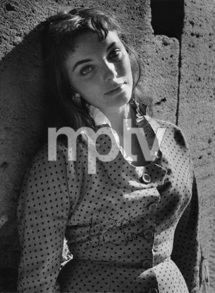 Joan Collins 1955 © 1978 Sid Avery - Image 0299_0229