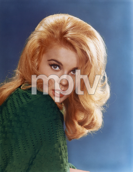 Ann-Margretcirca 1963© 1978 Sid Avery - Image 0332_0055