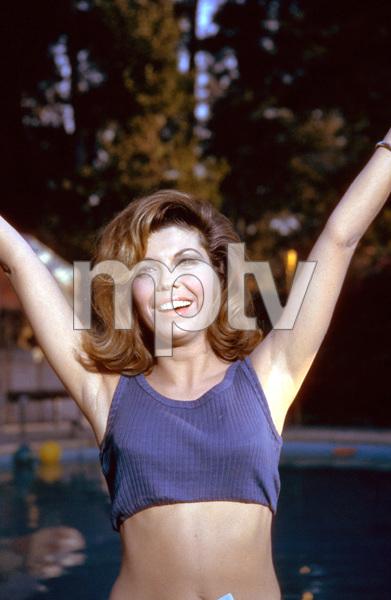Nancy Sinatra, c. 1964. © 1978 Ted Allan - Image 0336_0133