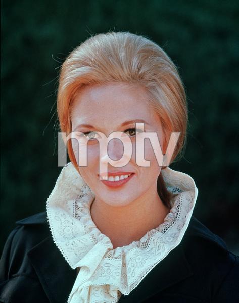 Faye Dunaway1967 © 1978 David Sutton - Image 0601_0215