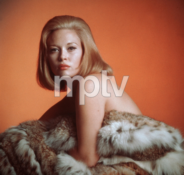 Faye Dunaway1967 © 1978 David Sutton - Image 0601_0216