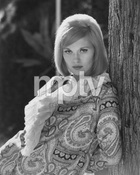 Faye Dunaway1967**J.S.C. - Image 0601_0223