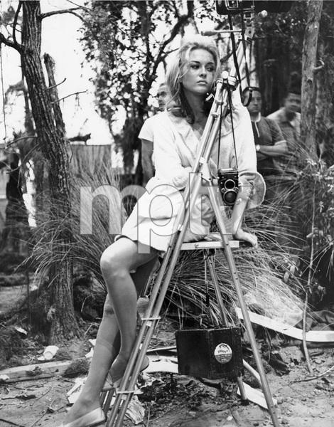 Faye Dunaway, mid 1960
