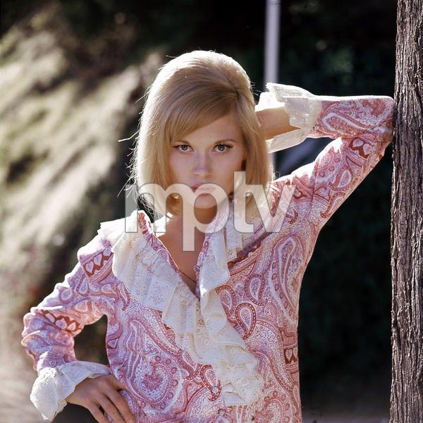Faye Dunaway, 1967, I.V. - Image 0601_0229