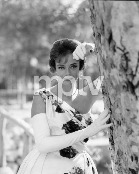 June Lockhart1961Photo by Gabi Rona - Image 0636_0018