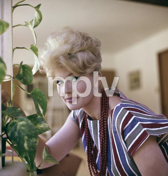 Connie Stevensat home 1972 © 1978 David Sutton - Image 0658_0053