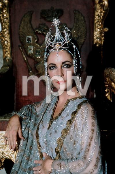 Elizabeth TaylorC. 1974MPTV - Image 0712_0062