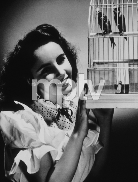 Elizabeth Taylor 1944**R.C.MPTV - Image 0712_0096