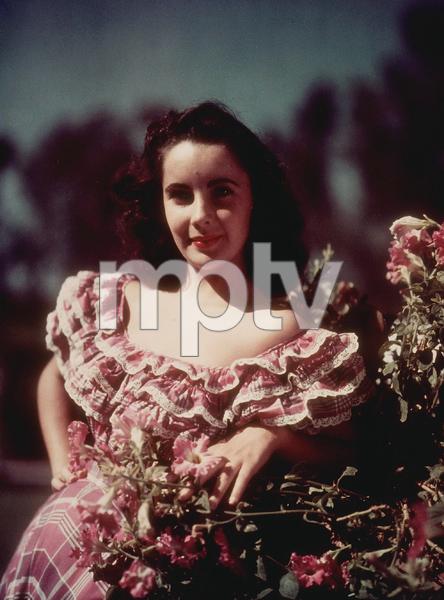 Elizabeth Taylorc. 1951MPTV - Image 0712_2156