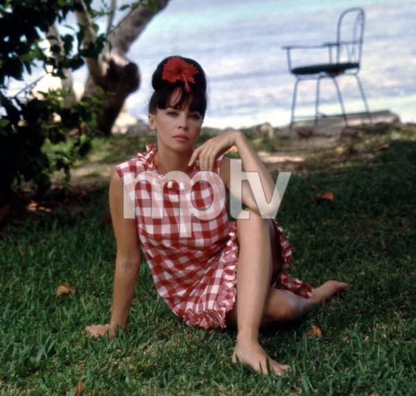 """Father Goose"" Leslie Caron 1964 Universal Pictures © 1978 Leo Fuchs - Image 0715_0041"