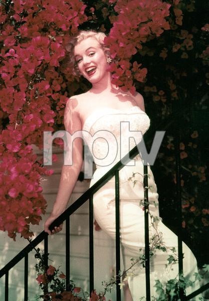 Marilyn Monroe, 1957. - Image 0758_0499