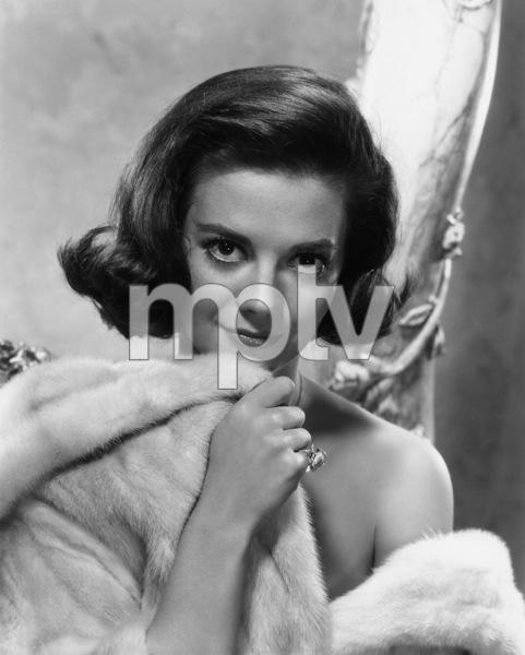 "Natalie Wood ""Splendor In The Grass""publicity portrait, 1961.**J.S. - Image 0764_0279"
