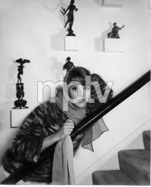 Natalie Wood, c. 1963. - Image 0764_0327