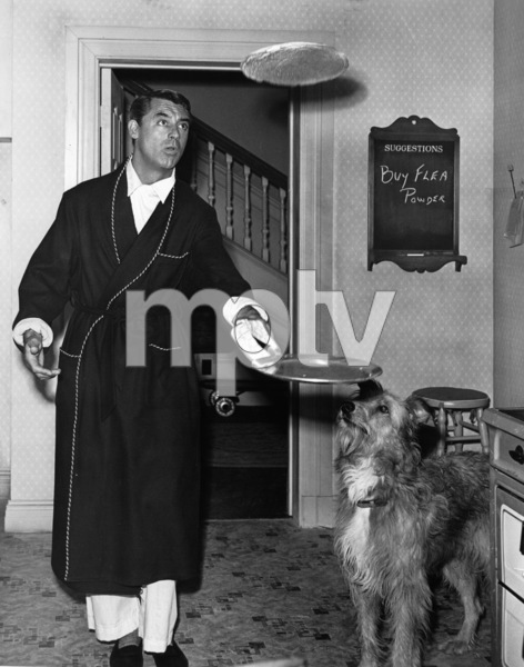 """Cary Grant and dog on the set of """"Room for One More""""1952Photo by Jack Albin - Image 0807_0014"""