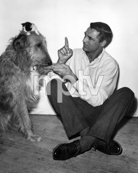 """Cary Grant and dog on the set of """"Room for One More""""1952Photo by Jack Albin - Image 0807_0148"""
