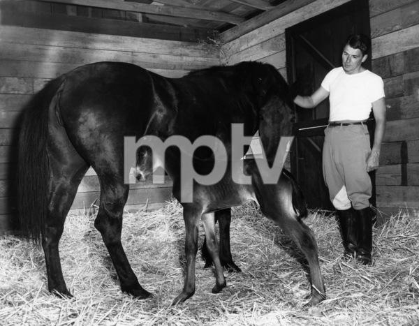 Ronald Reagan at his ranch in Northridge, Californiacirca 1948 - Image 0871_0101