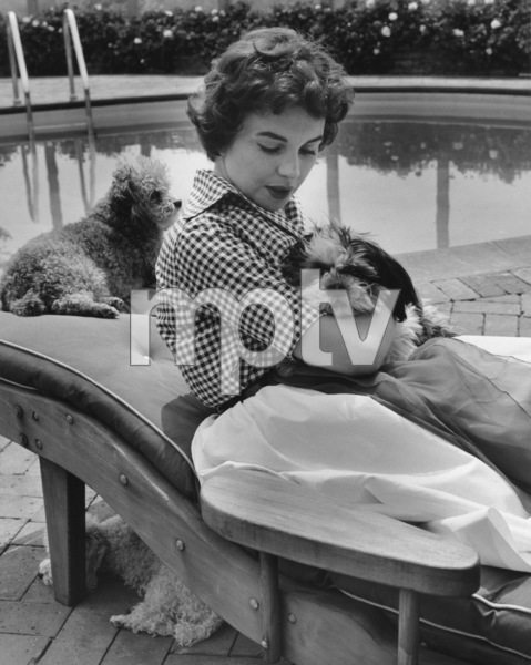 Jean Simmons at Home 4/14/1955 © 1978 Sid Avery - Image 0956_0056