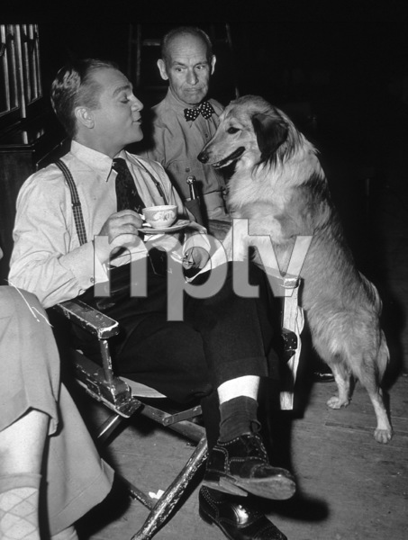 """James Cagney, James Gleason, Mr. Trouble (Dog) on The Set of """"Come Fill The Cup""""1951 WarnerPhoto By Mac Julian - Image 0969_0017"""