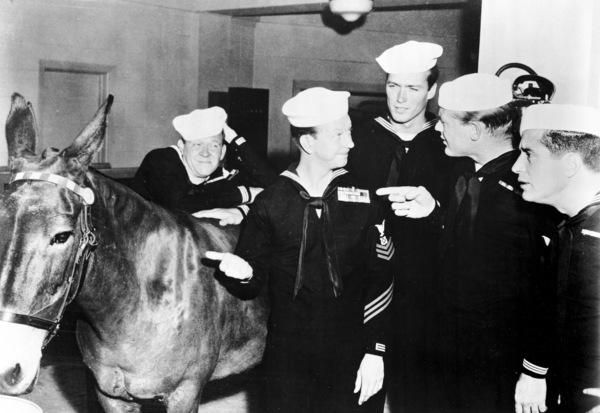 """""""Francis in the Navy""""Clint Eastwood, Donald O"""