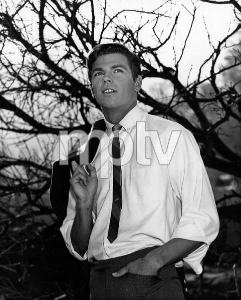 77 SUNSET STRIP, Robert Logan, late 60