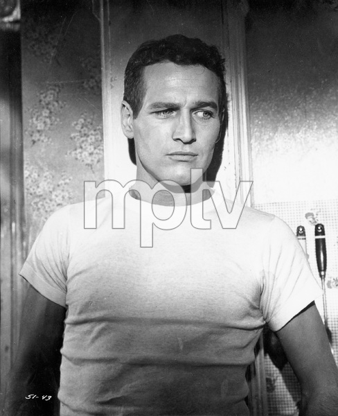 """The Hustler""Paul Newman1961 20th Cent. - Image 10712_0020"