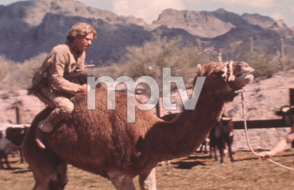 """""""The Quest""""Kurt Russell1978 - Image 11055_0004"""