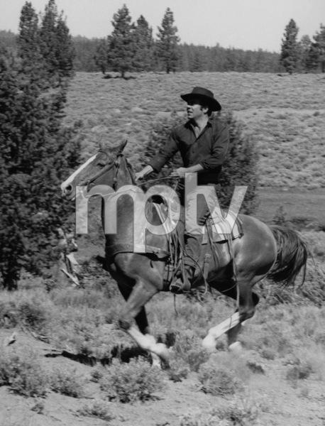 """Bonanza""Pernell Robertscirca 1960Photo by Joe Shere - Image 13223_0001"
