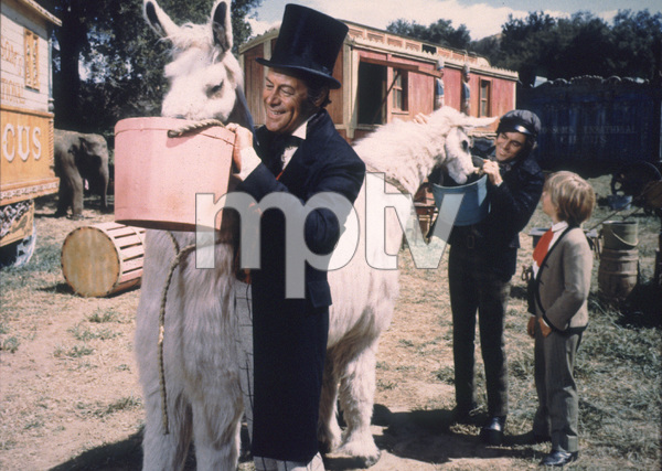 "1336-14 ""DR.DOLITTLE""REX HARRISON,ANTHONY NEWLEY,WILLIAM DIX1967 20TH CENT.FOX / MPTVG 1978 TED ALLAN - Image 1336_14"