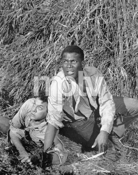 """The Defiant Ones""Tony Curtis & Sidney Poitier1958 MGM**I.V. - Image 1369_0005"