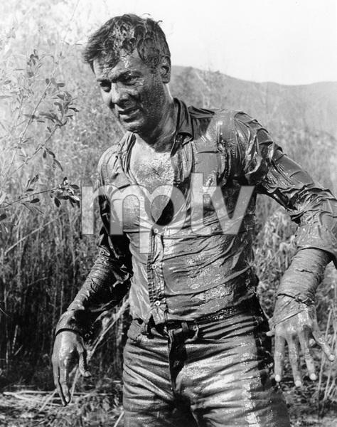 """The Defiant Ones""Tony Curtis 1958 MGM**I.V. - Image 1369_0010"