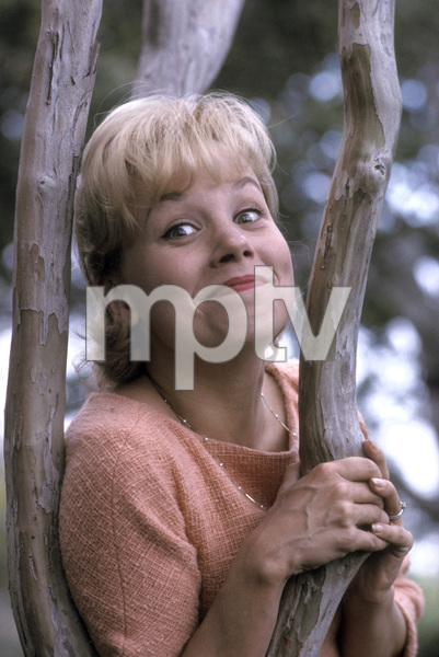 Joyce Bulifant1963 © 1978 Gene Trindl - Image 14050_0002