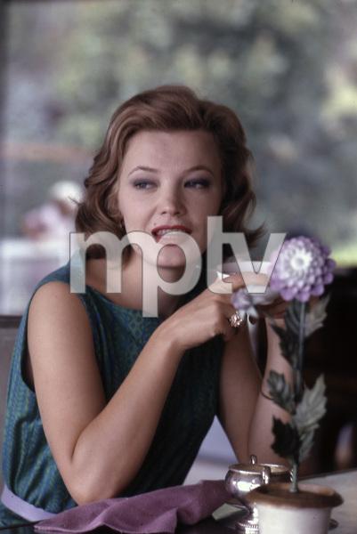 Gena Rowlands at home1961 © 1978 Leo Fuchs - Image 14366_0028