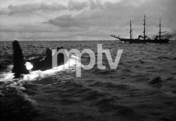"""20000 Leagues Under the Sea""1954 Walt Disney Productions** I.V. - Image 1701_0015"