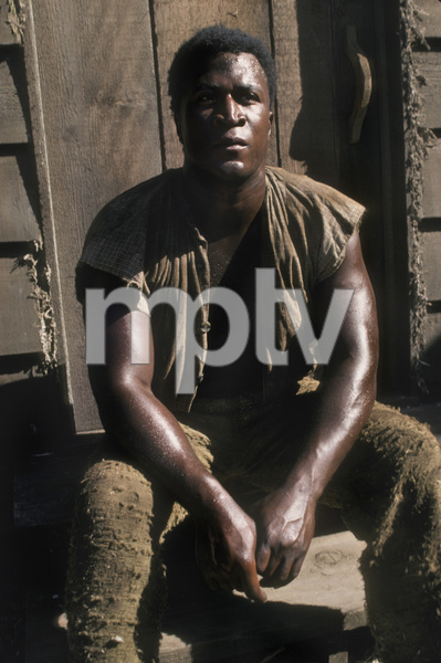 """Roots""John Amos1977** H.L. - Image 17658_0018"