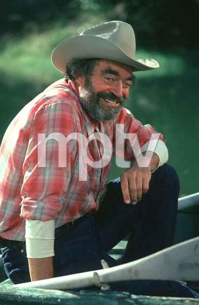"""Texas Wheelers""Jack Elam1974 ABC**H.L. - Image 18031_0009"