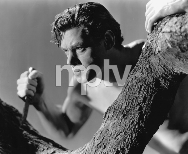"""Tarzan And His Mate""Johnny Weissmuller1934 MGM / Photo by Harvey White**I.V. - Image 19709_0005"