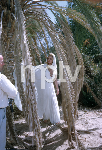 Ursula Andress1964 © 1978 Gunther - Image 2022_0005
