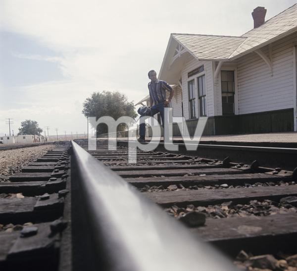 Harry Belafontecirca 1978© 1997 Ken Whitmore - Image 2061_0041