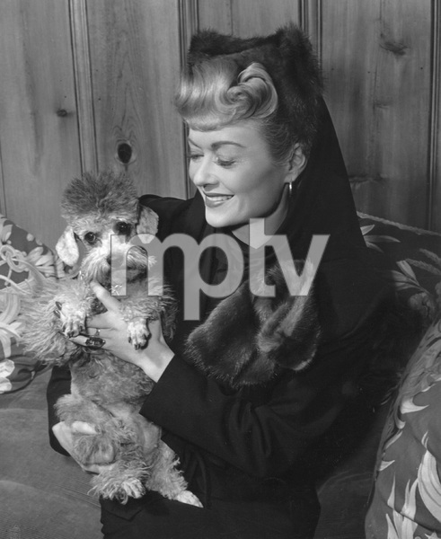 """Constance Bennettwith her French Poodle, Miss Prudenceon the set of """"The Unsuspected""""1947 - Image 2067_0004"""
