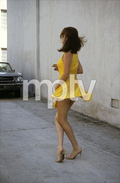Jacqueline Bisset behind sound stage1969 © 1978 David Sutton - Image 2083_0012