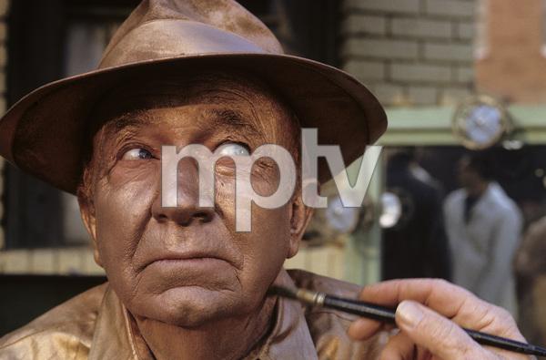 Walter Brennan1965 © 1978 Gene Trindl - Image 2116_0012