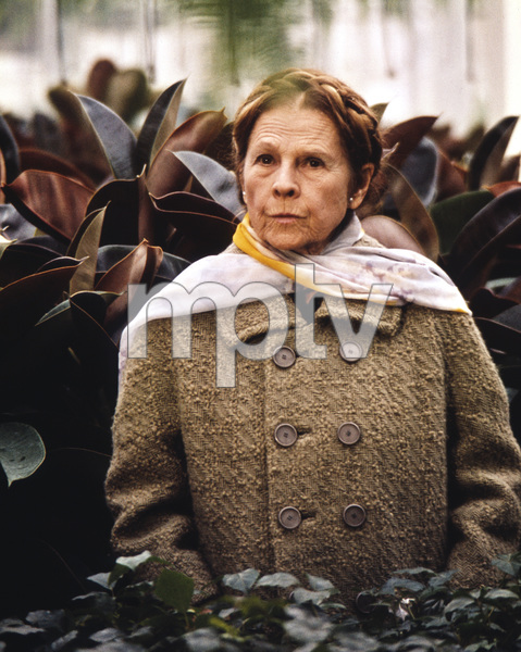 """Harold and Maude""Ruth Gordon1971 Paramount**I.V. - Image 21644_0007"