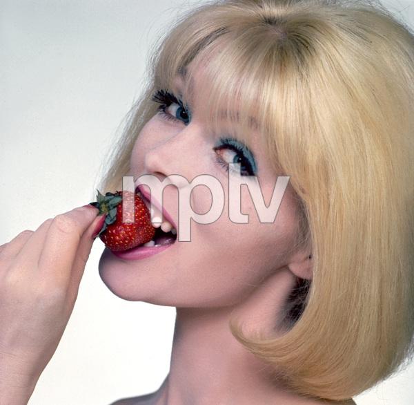 Nicolead singer of the Velvet Undergroundcirca 1960 © 1978 Mark Shaw - Image 21812_0002