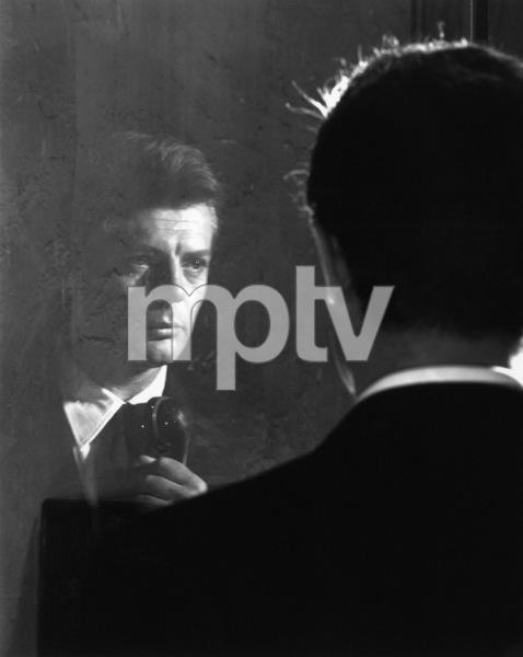 """8 1/2""Marcello Mastroianni1963** I.V.C. - Image 22184_0028"